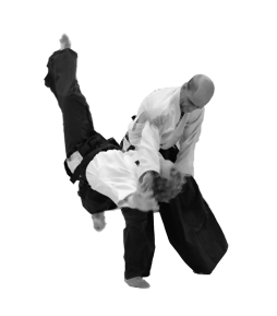 Image of throwing technique